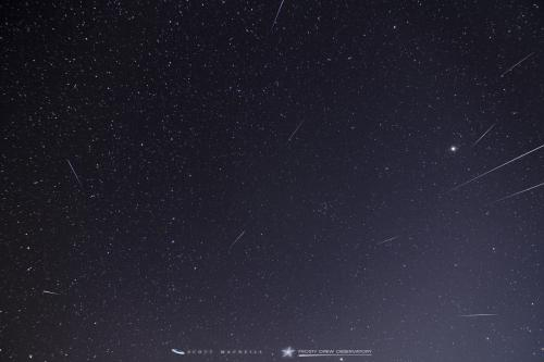 <p>This is a composite of 11 meteors captured during the 2016 Quadrantid Meteor Shower. Though hampered by the 28% waning crescent Moon, this years Quadrantids were fabulous! I counted 92 meteors over Frosty Drew. The 25º temps were significantly warmer than past Quadrantids, which usually drop into the single digits.</p><p>-Scott</p>