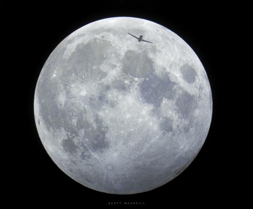 A plane photo bombs the penubral lunar eclipse in October 2013. Credit: Scott MacNeill